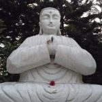 Shamanic Feng Shui Secrets for Success